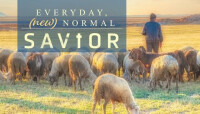 EVERYDAY, (new) NORMAL SAVIOR